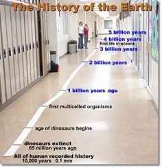 evolution of prokaryotes and eukaryotes pdf